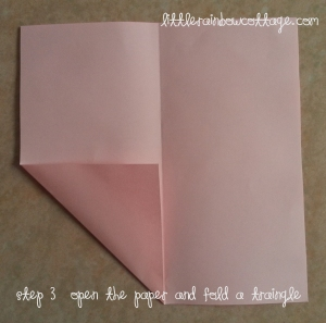 Heart Step 3